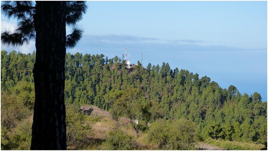 La Palma Wandern Montaña Las Tricias