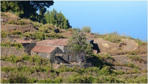 La Palma Wandern-Weinberghaus mit alter Weinpresse bei Briesta