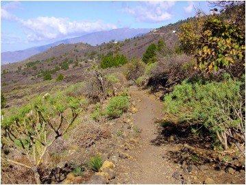 La-Palma-Todoque-Wanderung.-Montaña-Jedeye-aus-der-Ferne