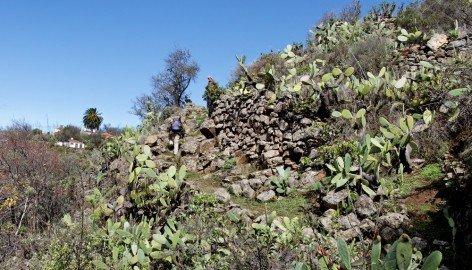 La Palma Wandern Alter Pfad im Barranco El Roque
