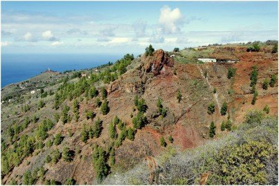 Puntagorda La Palma Wandern
