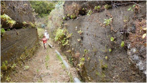 La Palma Wandern-Eine weitere Varieante des Wanderwegs PR LP4