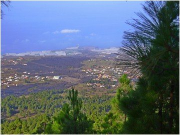 La-Palma-Wanderungen-Ausblick-auf-den-Lavastrom-des-San-Juan