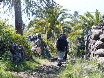 La Palma Wandern, Wanderweg SL LP 71,