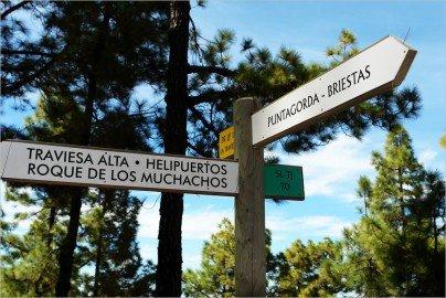 Wanderweg,SL LP 70,Tijarafe,La Palma