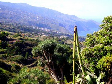 La Palma Wanderwege La Tosca