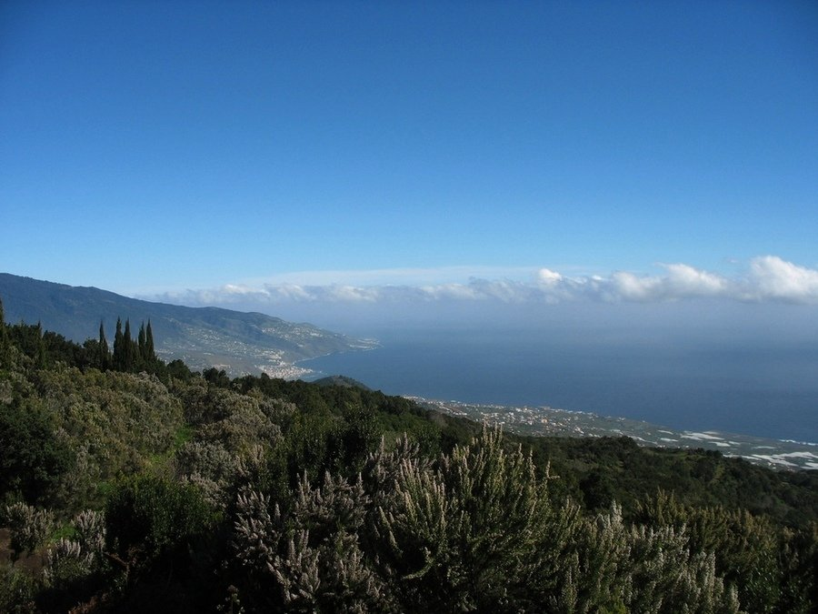 La Palma auf dem Wanderweg SL LP 123