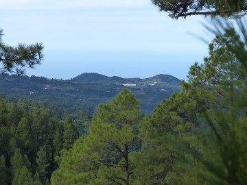 La Palma Wanderungen Spazierwanderung Roque Faro
