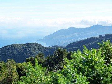 La Palma Wandern Ausblick auf die Steilküste