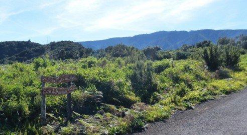 La Palma Wanderungen Die Quellentour des Nordens
