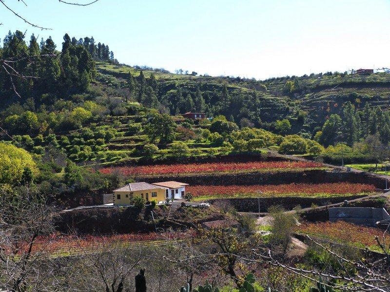 La Palma Wanderweg Landschaft beim Wanderweg SL LP 64