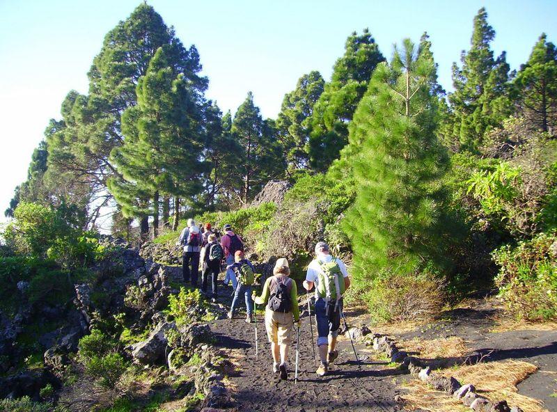 La Palma Wandertipps,gut geplante Wanderungen machen Spaß