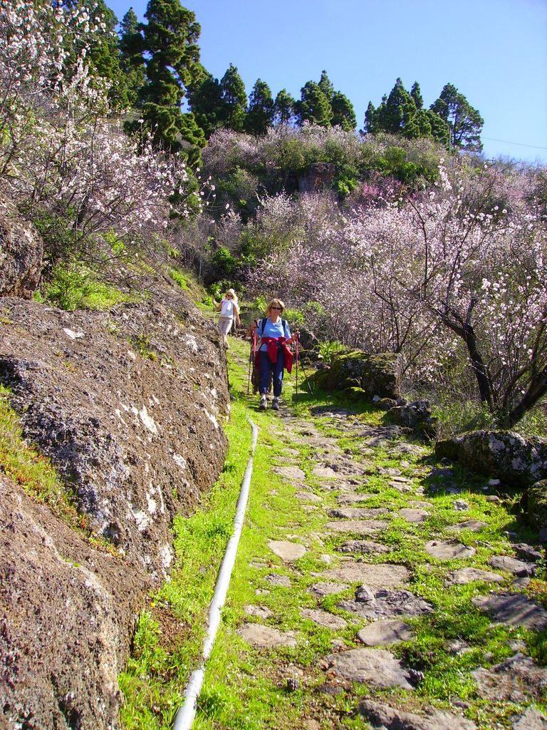 La-Palma-Wanderweg-auf-dem-Wanderweg-SL-LP-55
