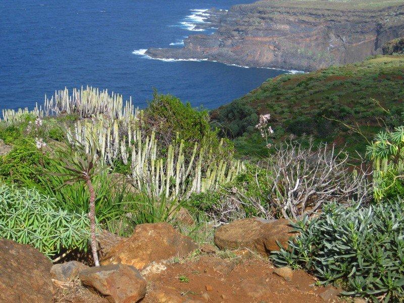 La Palma Wandern_Norküste