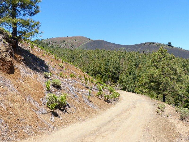 La Palma Wandern_unterhalb des Birigojo
