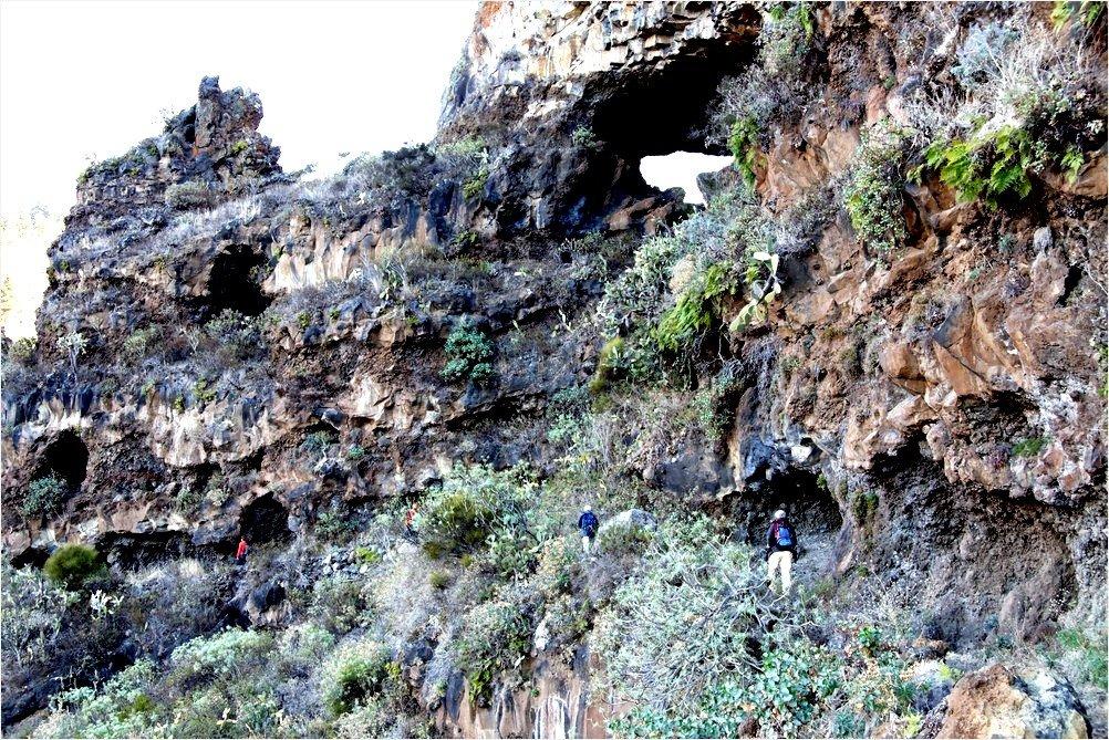 La Palma Wandern_im Barranco Jurado