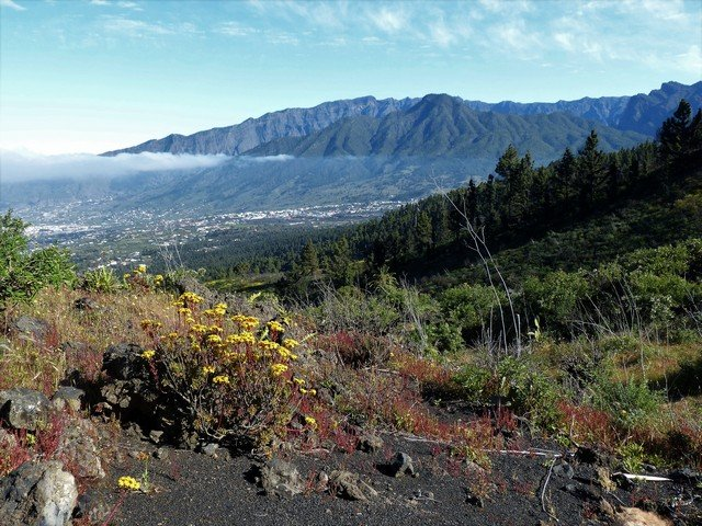 La Palma Wandern_Spaziergang Tacande4