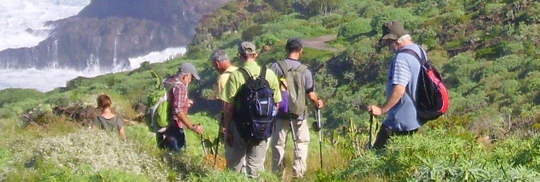 La-Palma-Wandern-Abstieg-zur-LOmada-Grande